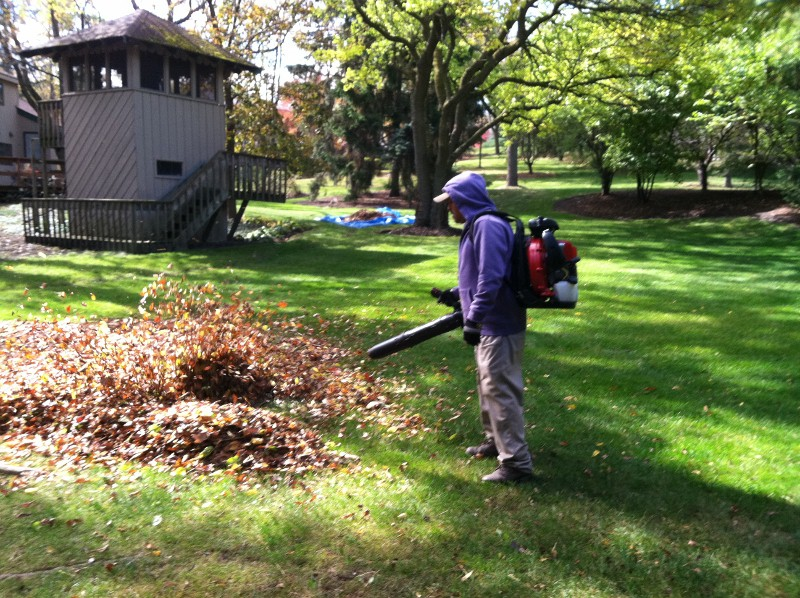 Spring Fall Cleanup J D Lawn Care Snow Removal Services